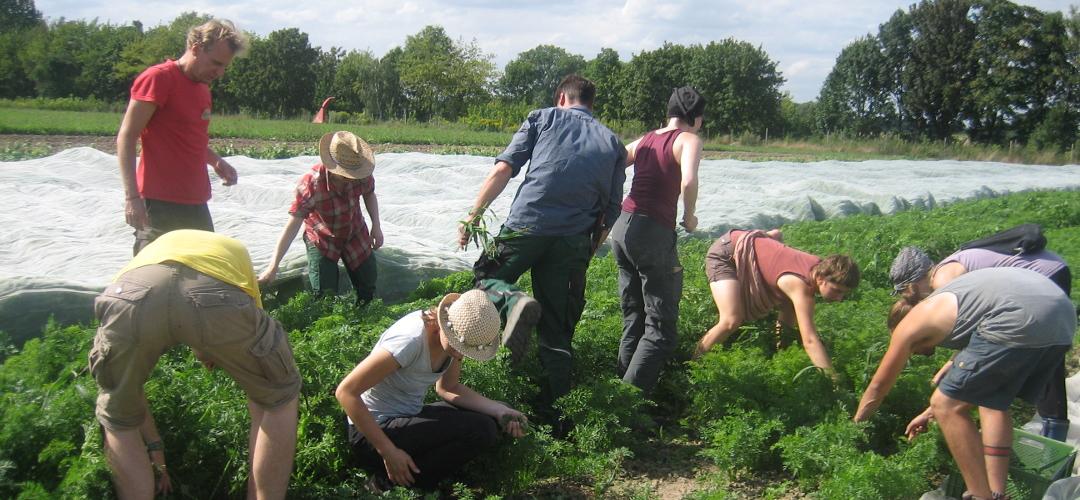 Gerechte und ökologische Landwirtschaft wird von den Schultern vieler Menschen getragen