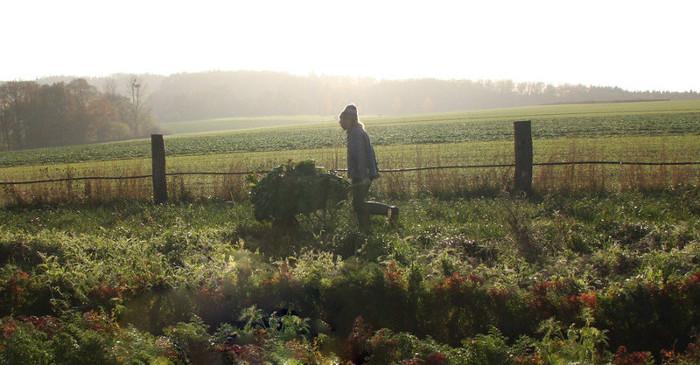 Ökologische Landwirtschaft: Bauer mit Schubkarre auf dem Feld